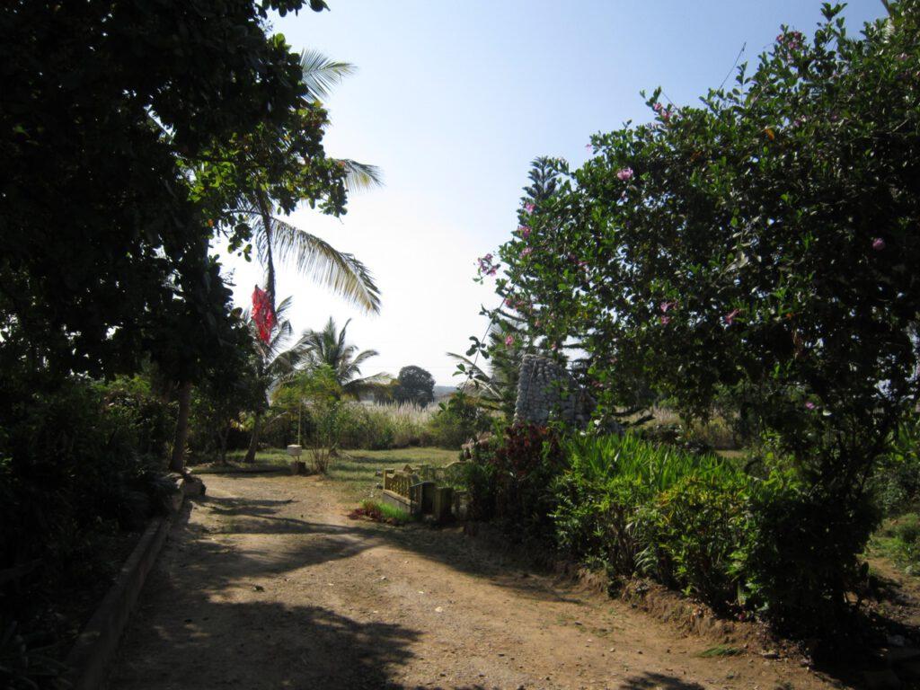 Blick aus dem heim Shanti Dhama auf das offene Feld